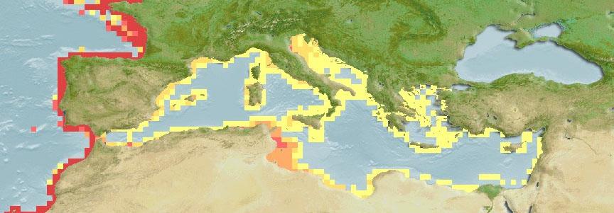 Balistes Capriscus Mediterranean Distribution Map