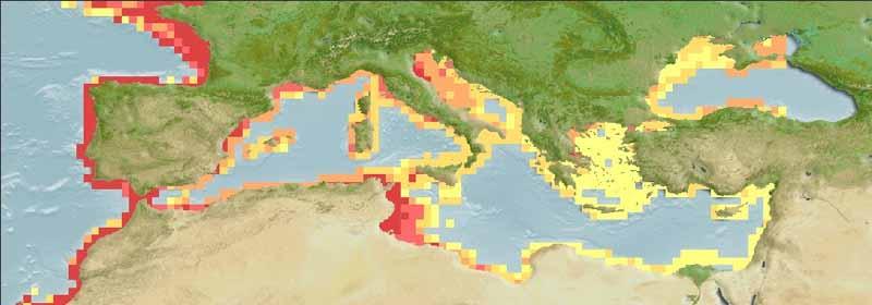 Common Sole - Solea Solea - Distribution Map