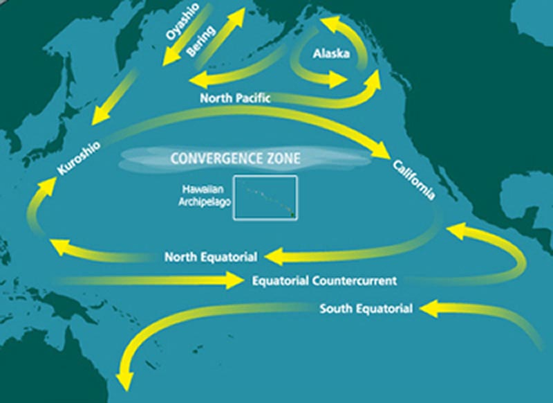 North_Pacific_Subtropical_Convergence_Zone