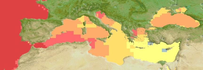 Xiphias Gladius Mediterranean Sea Distribution Map