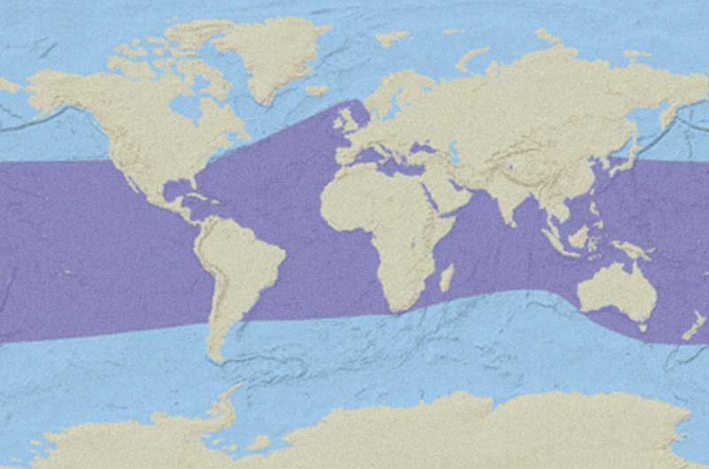 Leatherback Sea Turtle Distribution Map