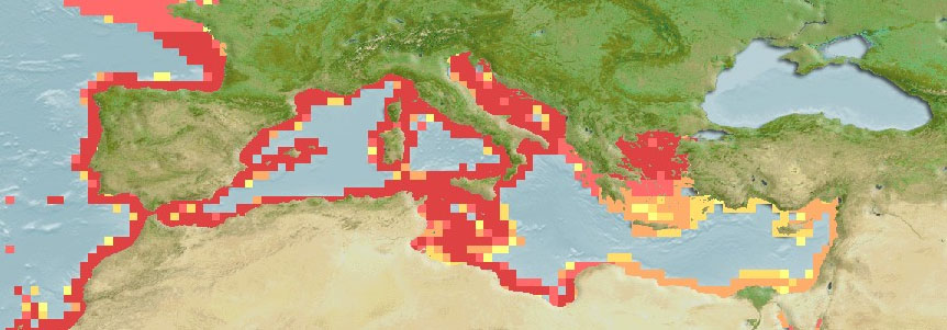 Scorpion Fish - Scorpaena Scrofa Distribution Map