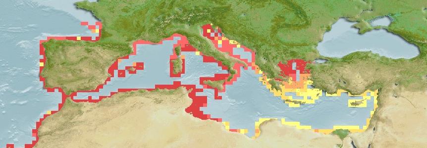 Sparisoma Cretense Mediterranean Distribution Map