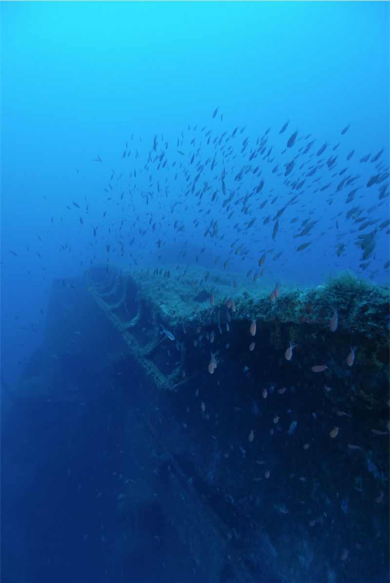 MS Zenobia Wreck Dive Site